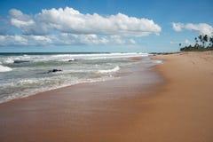 Zandig strand met overzeese branding en palmen Stock Foto's