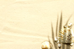 Zandig strand met palm en shells abstracte achtergrond royalty-vrije stock afbeeldingen