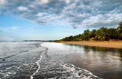 Zandig strand met Palmenbomen en Oceaangolven Royalty-vrije Stock Afbeelding