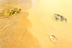 Zandig strand met rotsen Royalty-vrije Stock Foto's