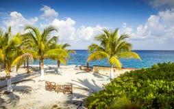 Zandig strand op een tropisch eiland met palmen Stock Afbeelding