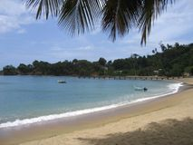 Zandig strand Tobago Royalty-vrije Stock Afbeelding