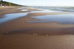 Zandig strand van de Oostzee Stock Afbeeldingen