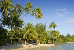 Zandig tropisch strand 6 Stock Afbeeldingen