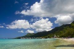 Zandig tropisch strand 9 Stock Foto's