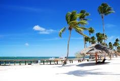 Zandig tropisch strand Bavaro, Punta Cana, Dominicaanse Republiek Stock Afbeeldingen