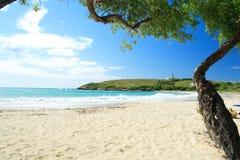 Zandig wit strand met vuurtoren bij achtergrond Stock Fotografie