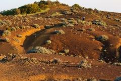 Zandig woestijnlandschap in zonsondergang met zwervers in de rug stock foto