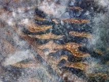 zandige bodem van ondiep water om door jong ijs te schieten stock afbeelding