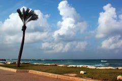 Zandige strand en overzeese kust in het district van Knuppelgalim van Haifa, Israël stock afbeelding
