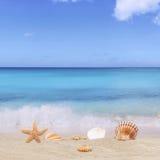 Zandige strandachtergrond in de vakantie van de de zomervakantie met overzees en Stock Foto