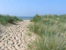 Zandige weg aan strand Royalty-vrije Stock Afbeeldingen