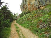 Zandige weg langs rots met bloemen Stock Fotografie
