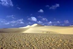 Zandige woestijn Stock Foto