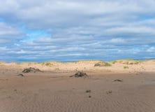 Zandige woestijn op Kola Peninsula Royalty-vrije Stock Foto's