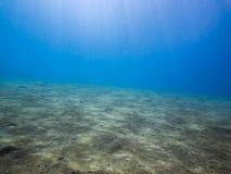 Zandige zeebedding Stock Afbeeldingen