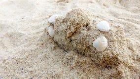 Zandkasteel met seashells beach rest spa exemplaarruimte stock foto's