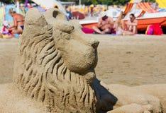 Zandleeuw op het Strand Stock Afbeelding