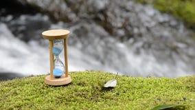 Zandloper op het mos stock footage