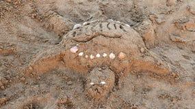 Zandschildpad Stock Afbeelding