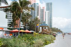 Zandstrand de blauwe hemel in van Miami, de Atlantische Oceaan, palmen, wolkenkrabber bij de achtergrond stock foto's