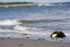 Zandstrand en ocean.GN royalty-vrije stock fotografie