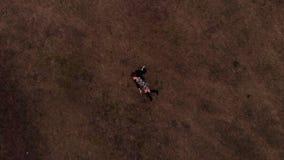 Zangão aéreo disparado do modelo adolescente que veste o vestido elegante, encontrando-se na grama verde que faz os movimentos le filme