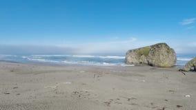 Zangão que voa sobre a praia da areia com a madeira lançada à costa que enfrenta o oceano video estoque