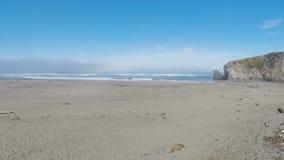 Zangão que voa sobre a praia da areia com a madeira lançada à costa que enfrenta o oceano vídeos de arquivo