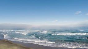 Zangão que voa sobre a praia da areia para o oceano e que paira filme