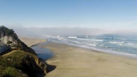 Zangão que voa sobre a praia da areia que puxa do oceano e do córrego filme