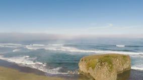 Zangão que voa sobre a praia da areia que puxa do oceano e que paira filme