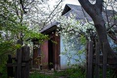 Zaniechana łowiecka stróżówka w jesieni budy las Niszczyć starych drewnianych ruinach w wiosen drewnach, słońce lekki dzień fotografia stock
