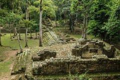 Zaniechane Majskie świątynie, Copan, Honduras Obraz Royalty Free