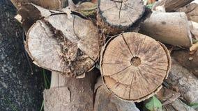 Zaniechani drewna fotografia stock