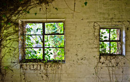 Zaniechani okno Obraz Royalty Free