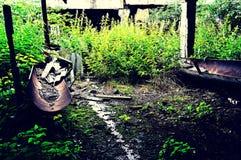 Zaniechany budynek, chwytający naturą Obraz Royalty Free