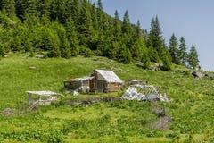 Zaniechany drewniany sheepfold w Carpathians blisko pasma górskiego obraz stock