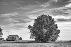 Zaniechany farmyard fotografia royalty free