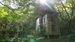 Zaniechany hotelowy kurort przerastający roślinami w dżungla lesie, Azja miasto natura kontra zbiory