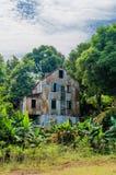Zaniechany i fading dom otaczający drzewami, ślada cywilna wojna, Robertsport, Liberia, afryka zachodnia Zdjęcia Stock
