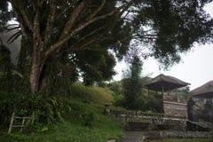Zaniechany i tajemniczy hotelowy Bedugul Taman w mgle Indonezja Zdjęcia Stock