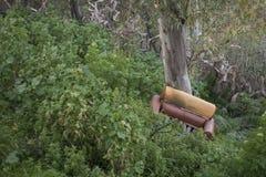 Zaniechany karło w lesie Fotografia Royalty Free