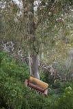 Zaniechany karło w lesie Zdjęcia Royalty Free