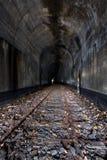 Zaniechany linia kolejowa tunel - Ohio obraz royalty free