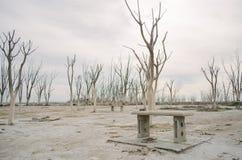 Zaniechany miejsce w Buenos Aires Fotografia Royalty Free