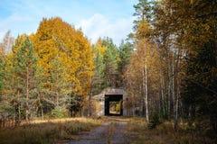 Zaniechany militarny miejsce - baza powietrzna w lesie Obrazy Royalty Free