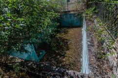 zaniechany pływacki basen z liśćmi zdjęcie stock