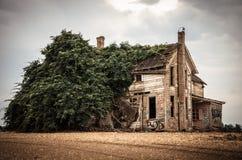 Zaniechany Przerastający dom z graffiti fotografia royalty free