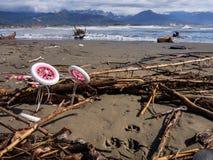 Zaniechany spacerowicz wzdłuż plaży Obraz Royalty Free